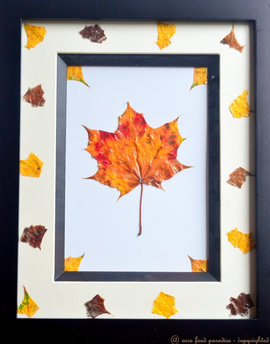 Preserving Fall leaves with Mod Podge – Bring 'Autumn ...