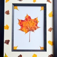 Preserving Fall leaves with Mod Podge - Bring 'Autumn' into your home!